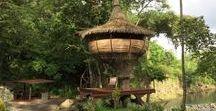 Panama Tree House / Tree Houses in Panama