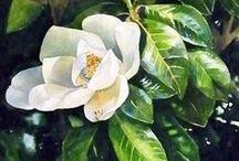 Живопись   Цветы