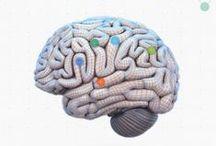 Neurociencia / una pasión que es casi un vicio, una obsesión, el cerebro, la mente, el alma perdida de los griegos, quizá el creador de dios