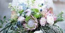 | Wedding: Flowers |