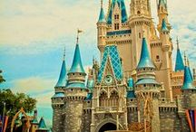 Our Disney World Trip  / 2 times a charm! / by Erin Chastine