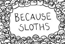 because sloths / The cutest animal out there / by Taylor Lacey Petersen