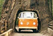 Hippie T2