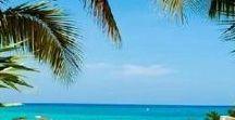Beach life / Beach life, best life?