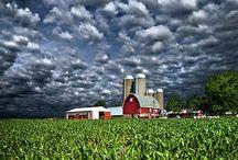 Farmville / by Riley Smith