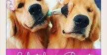 Lifestyle & Beauty / Women's Fashion, Hair, Makeup Techniques, Nails, Self Care