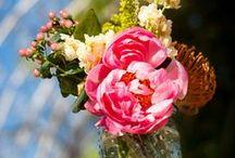 Floral & Bouquets