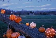 Autumn / by Rebecca Brink