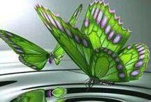 Butterflies & moths / Butterflies