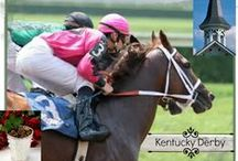 Kentucky Derby, Carolina Cup, horse races