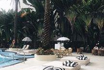Miami Travel Guide / Vocation ideas