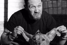 Tom & dogs
