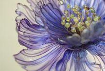 flowers / by Karen Lizette