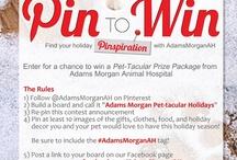Adams Morgan Pet-tacular Holidays