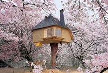 Treehouses / All kinds of tree homes / by Lety