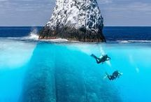 Waters Wild / Spectacular dives sites. Off-the-beaten track places that I'd go back to in a blink.