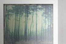 Flat decor / by Tiziana Schembri