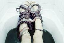 Octopus / Pulpo / by Marina Ortiz