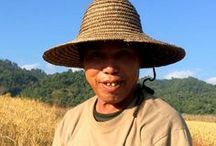 Myanmar Travel / Tips and inspiration for traveling to Myanmar