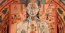 Anatomía Esotérica