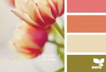 Paiting tips & color choices