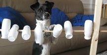 Maya / Hundespielzeug Hundezugehör