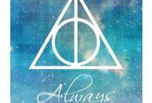 『Harry Potter』 / ~Pingardium Leviosa~