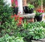 Landscaping & Outdoor Projects / What's inside your home matters, but what's outside of it does too. Beautify your home with these outdoor projects to improve your landscape.