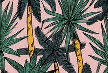 Prints + Colors / by Saskia