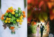 Fall Wedding in Greece / Destination wedding in Evoia, Greece. Photography by George Pahountis