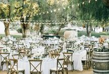 VINEYARD WEDDINGS / Vineyard wedding, vineyard wedding venue, vineyard setting wedding, vineyard wedding ceremony, getting married in a vineyard, romantic vineyards, beautiful vineyard weddings, vineyard wedding ideas, vineyard wedding style, vineyard wedding inspiration