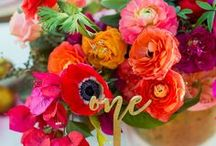 COLORFUL WEDDINGS / Colorful weddings, bright weddings, pops of color wedding, summer weddings, cheerful wedding decor, ideas for a colorful wedding, how to integrate color into your wedding, bright bridesmaid dresses, colorful bridesmaid dresses, unique wedding ideas, unique color ideas for a wedding, color inspired weddings, cheerful wedding ideas