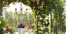 Garden & Outdoor Living / Tips, Tricks, and Tutorials for having a beautiful garden and outdoor living space, growing vegetables