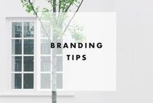 Branding Tips / create a style guide for your brand   brand strategy, elements of style   Reaching your target customer  