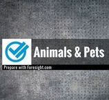 Animals and Pets / Disaster preparedness and survival related information for pets and animals.