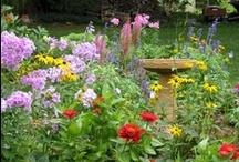 dream garden / by Elisete Rossini
