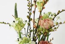 Le pouvoir des fleurs / by Céline Blondelle