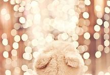christmas / by Elizabeth Telford