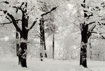 Season [Winter]