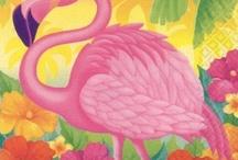 Flamingo / by Gyna Gordon
