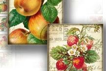 Fruit Art / by Gyna Gordon