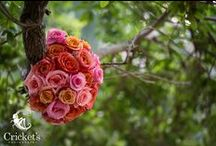 Wedding Flowers / Wedding flowers of all kinds  #weddingflowers #weddingbouquet  Cricket's Photography www.cricketsphoto.com