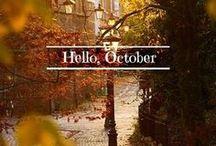 Fall / by Amanda Anderson - O2 Designer ID#10407345