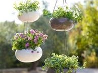 Container Gardening in Small Spaces / Solutions and ideas for container gardening for gardening in small spaces such as patio gardening, balcony gardening, gardening for beginners, rooftop gardening, garden ideas, and garden tips.