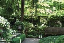 all about gardens & outdoor living... / by Sherri McCarthy