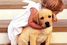 Puppy love / by Tami Sasson