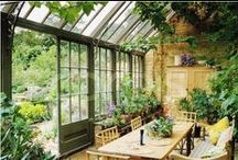 Conservatories:  Keeping plants warm in the winter;) / I love plants and when moving to the Upstate of SC from sunny FL I started drooling even more about the idea of NEEDING one.  This is my little board of beautiful ideas...