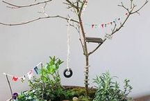Tiny Fairy Garden / by Jess Madri
