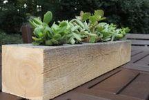 LeBrun Designs Cypress Succulent Planters