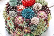 Cactus Succulent Cakes / Is this the new trend in cake decorating?